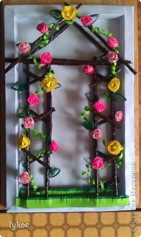 Розы вьющиеся