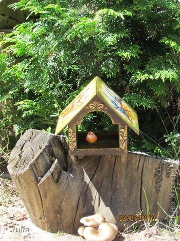 любим мы птичек... любим их кормить.... фото 4
