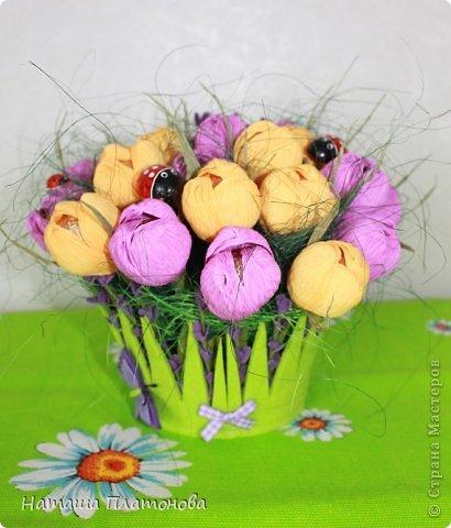 Вроде и не весна на дворе, а захотелось крокусов)))))))) фото 2