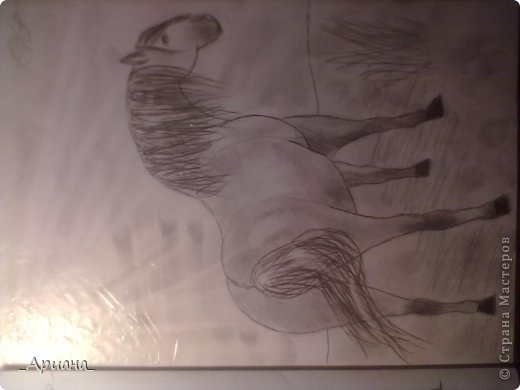лошадь... раскрашенная восковыми мелками фото 7