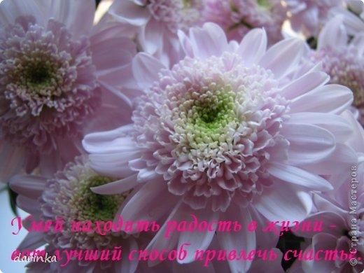 Рада приветствовать всех гостей и друзей!!! Сегодня я к вам с долгожданным и давно желанным ВЕЛОСИПЕДОМ!!! Как же давно хотелось его сделать....после того,как увидела МК Екатерины-Sjusen https://stranamasterov.ru/node/505344?c=favorite  Огромное спасибо!!!Очень подробный и доступный МК!! фото 13