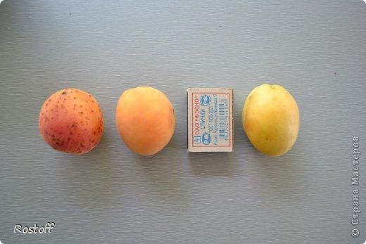 Кулинария Мастер-класс Пастила из абрикосов МК фото 3