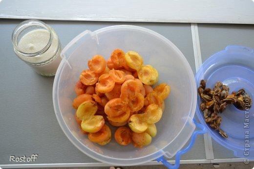 Кулинария Мастер-класс Пастила из абрикосов МК фото 4
