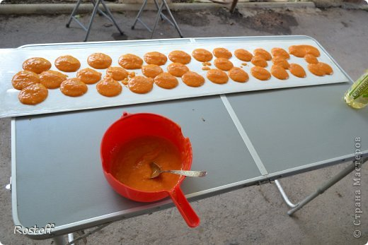 Кулинария Мастер-класс Пастила из абрикосов МК фото 6