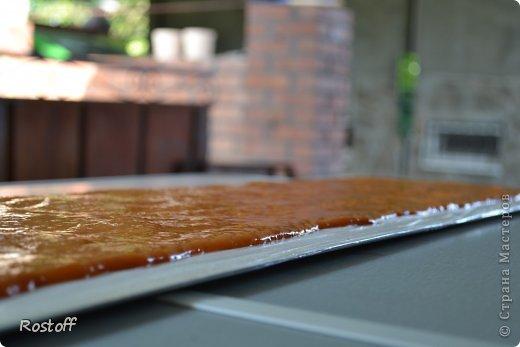 Кулинария Мастер-класс Пастила из абрикосов МК фото 9