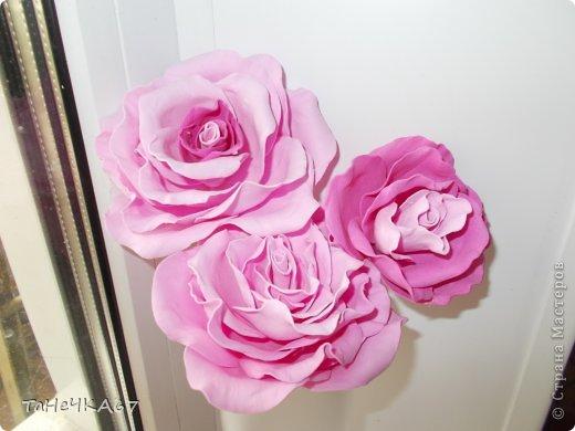 Доброго времени суток всем!Вот мои работы с фомом.для заколок очень хорош,легкий.старалась приблизить цветы к натуральным.вот что получилось фото 3