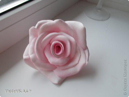 Доброго времени суток всем!Вот мои работы с фомом.для заколок очень хорош,легкий.старалась приблизить цветы к натуральным.вот что получилось фото 2