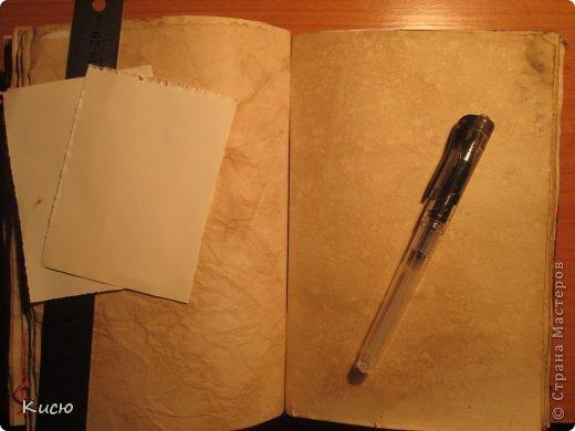 Вид спереди + размер (относительно органайзера). фото 2