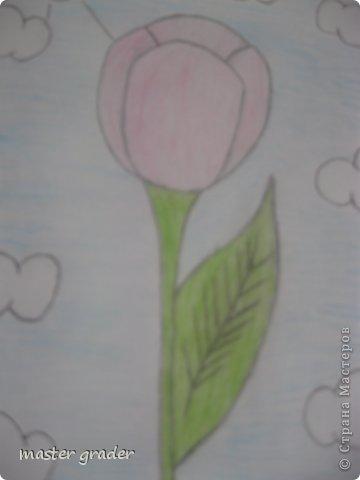 Вот и мой тюльпан.Рисовала обычными цветными карандашами. фото 2