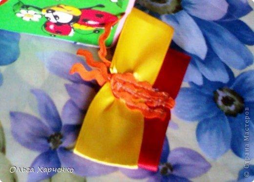 Кубик 8х8 см. Ткань, паролон, погремушка, ленты разные, деревянная бусина. Бабочка и шмель на лентах и с липучкой. Летают к цветам- серединки ромашки и подсолнуха тоже липучка. Внутри кубика погремушка. фото 3