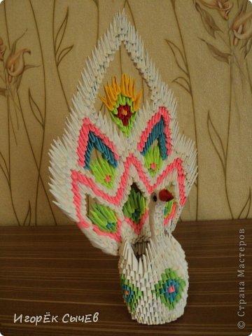 Лебедушка фото 3