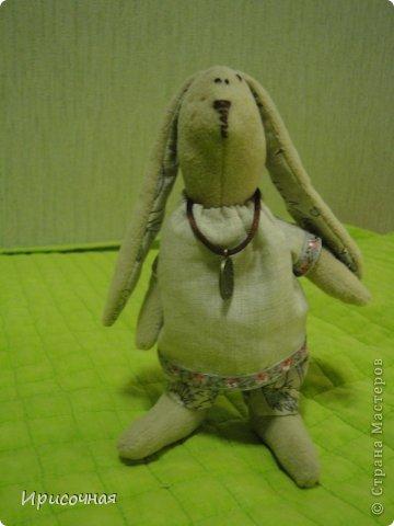 Вот такие зайцы у меня получились фото 4