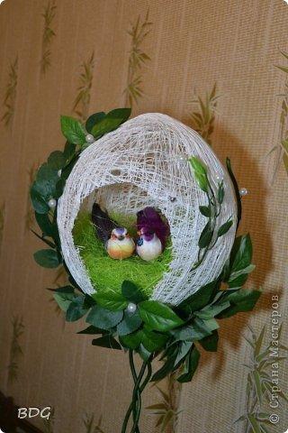"""Топиарий """"Гнездо"""" фото 2"""