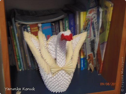 Лебеди. фото 3