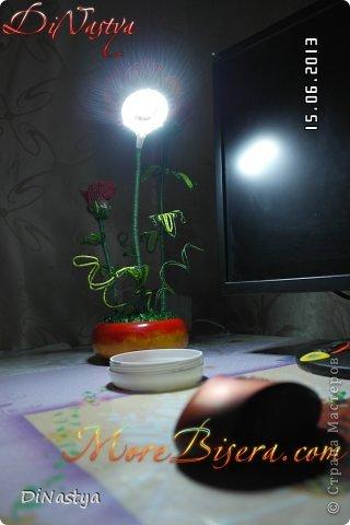 МК Композиция Анемоны ночной светильник  фото 2