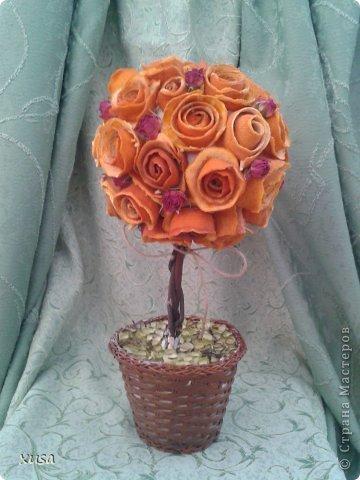 Вот создались такие эко топиарии! Из уже всем знакомым стружки древесной, а также из апельсиновых и мандариновых корок, ну и сухой спрей-розы. фото 4
