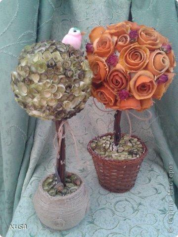 Вот создались такие эко топиарии! Из уже всем знакомым стружки древесной, а также из апельсиновых и мандариновых корок, ну и сухой спрей-розы. фото 1
