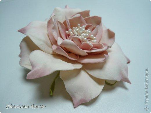 Цветок цветет как колокольчик