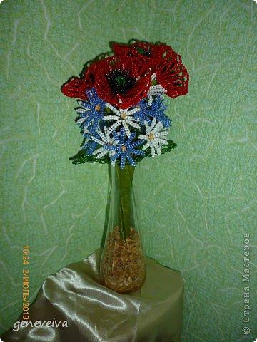 Моя первая орхидея фото 5