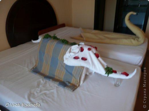 Уборщик ( в Египте нет женщин-горничных, в номерах убирают мужчины) делал нам различные фигурки из полотенец и одеял. Дети каждый день ждали, что же нам сделают сегодня, и очень радовались, увидев очередную фигурку). Фигурки украшал веточками кустарника и цветами и лепестками гибискуса... фото 9