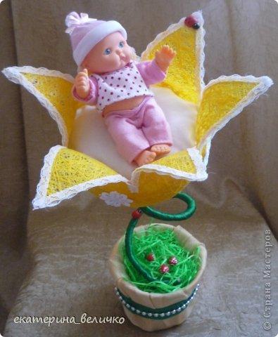 младенец в цветке фото 1