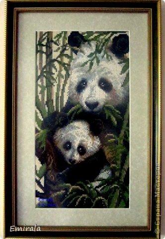 """Риолис 1159 """"Панда с детенышем"""" фото 1"""