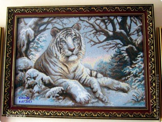"Риолис (Сотвори сама) 1184 ""Бенгальский тигр"""