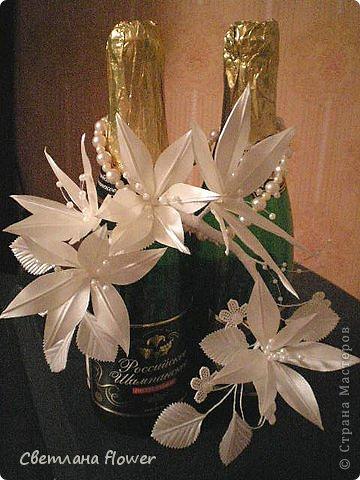 Семейный очаг для моложоженов! (Все цветы выполены из нажелатининого креп-сатина и обработаны бульками). фото 55