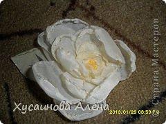 Мои первые цветочки  фото 5