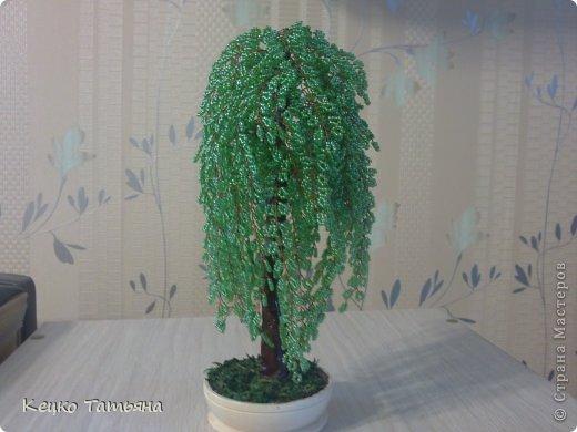 Ива.  Набор для плетения деревьев из бисера MAGIRA.  Бонсай, бисер, проволока.
