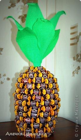 На день рождение мальчику сделали вот такой ананас. фото 1