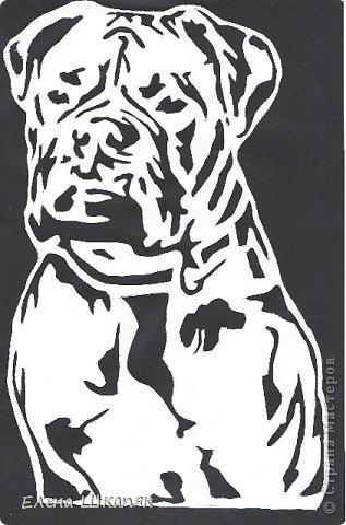 Картина панно рисунок Открытка Вырезание Новые работы Бумага фото 12