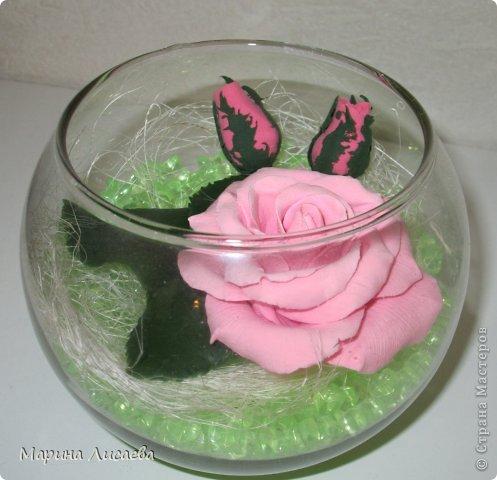 Роза сквозь стекло фото 4