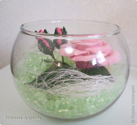 Роза сквозь стекло