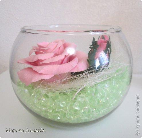 Роза сквозь стекло фото 2