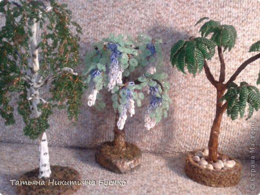 Поделка изделие Плетение цветы и деревья из бисера Бисер фото 4.