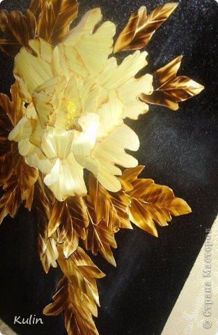 вот такой красавец сложился из остатков урожая прошлого года...размер работы 21х30 фото 4