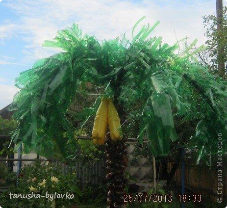 Пальма из пластиковых бутылок Страна Мастеров