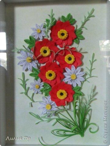 Картина панно рисунок Квиллинг Картина Маки и ромашки Квиллинг Бумага.