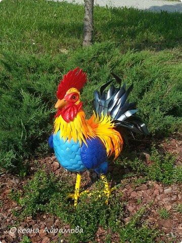 """Хочу познакомить Вас со своим петушком """"Петруней"""".  Ни один двор в селе или  деревне, не обходится без этой великолепной птицы. Вот и я сделала себе друга, яркого и величественного хозяина двора! фото 2"""