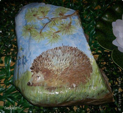 Доброй ночи!!! Сегодня мои камешки не цветочные, а животно-птичьи)))))) 1-й Мама с ежонком фото 3