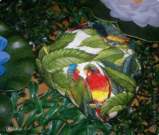 Доброй ночи!!! Сегодня мои камешки не цветочные, а животно-птичьи)))))) 1-й Мама с ежонком фото 7