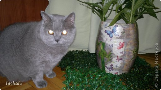 Доброй ночи!!! Сегодня мои камешки не цветочные, а животно-птичьи)))))) 1-й Мама с ежонком фото 25