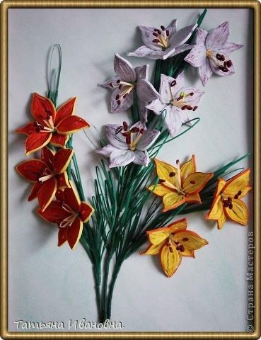 мои лилии по мк Пылинка фото 1