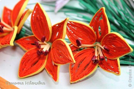 мои лилии по мк Пылинка фото 2