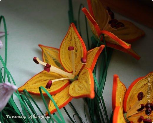 мои лилии по мк Пылинка фото 4
