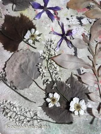 Давайте сделаем вместе картину из растений фото 8
