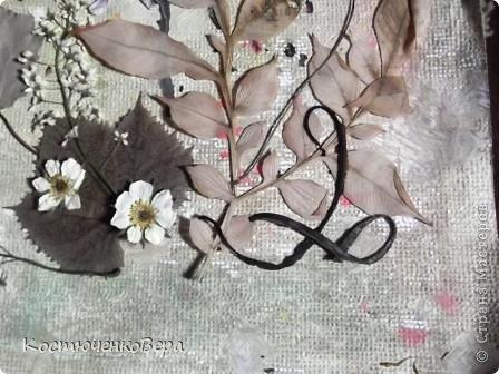 Давайте сделаем вместе картину из растений фото 9