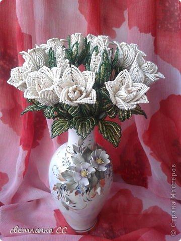 Поделка изделие Бисероплетение Снова розы кустовые Бисер фото 1.