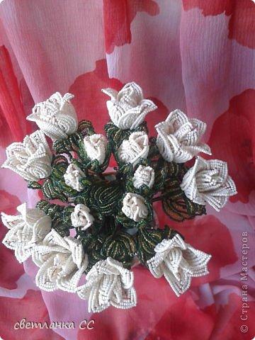Поделка изделие Бисероплетение Снова розы кустовые Бисер фото 2.